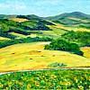 Toscane (Il Catrino)