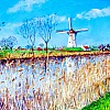 Molen aan Damse vaart (50x70)
